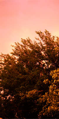sunset_main